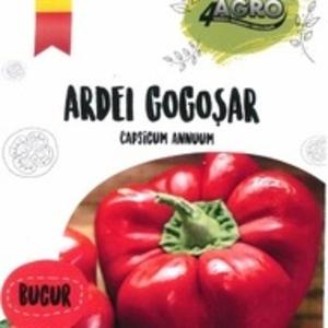 ARDEI GOGOSAR BUCUR