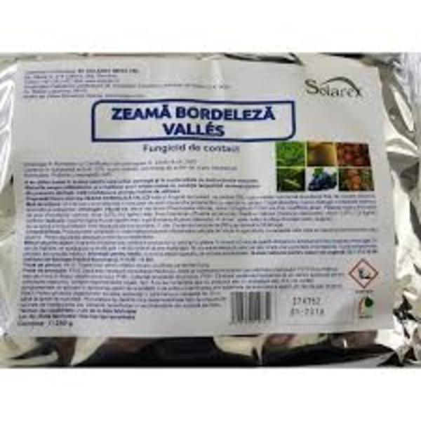 ZEAMA BORDELEZA VALLES