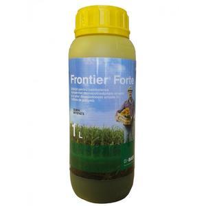 Frontier Forte