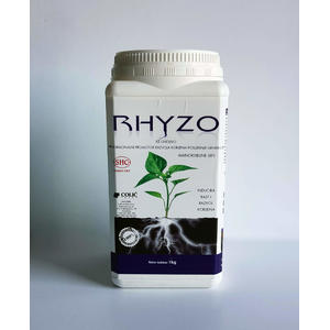 RHYZO